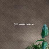 Con Cerámica Penta y su color Cenizo, recrea ambientes más íntimos, tenues en iluminación, asociándose a estilos más exóticos y naturales.  Búscalo en todos los locales @keramikos_ec a nivel nacional.  #Rialto #CerámicasRialto #pisos #paredes #cerámica #porcelanato #hogar #decoración #homedesign #interiordesign #diseñodeinteriores #Ecuador
